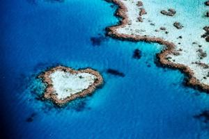 aerial_of_heart-shaped_reef__hardy_reef__near_whitsunday_islands__queensland__australia
